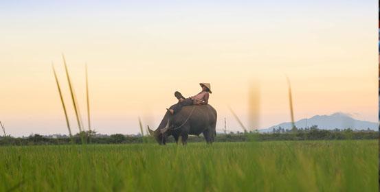 destinazioni alternative vietnam rurale