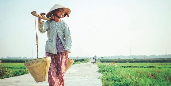 campagna del vietnam